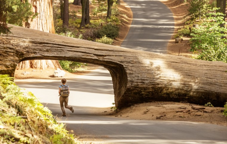 A woman passing underneath the grand tunnel log